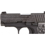 "Sig Sauer P238 ""We The People"""