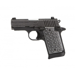 """Sig Sauer P938 """"We The People"""""""