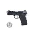 Smith & Wesson M&P Shield EZ Performance Center .380ACP TS Silver